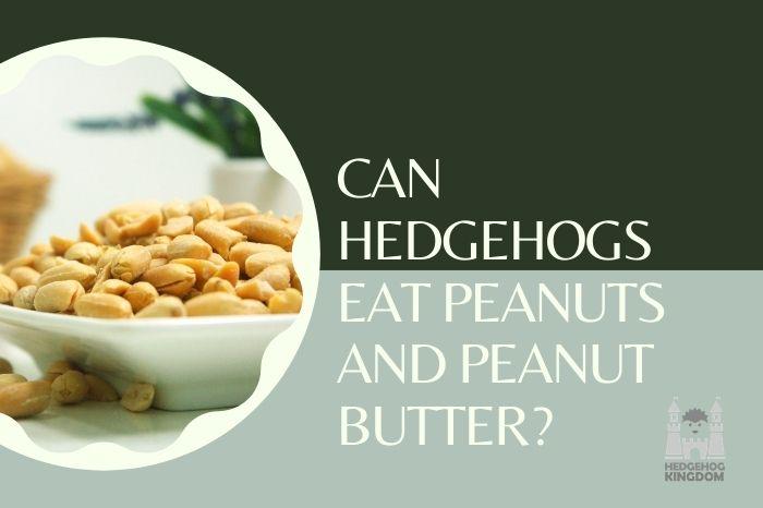 peanuts on a plate