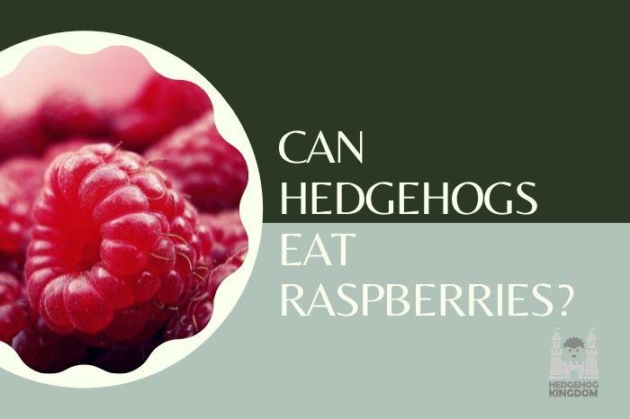 big raspberry